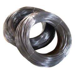 Steel wire for spring