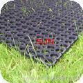 grass mattresses