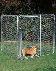 chain link fencing dog kennels