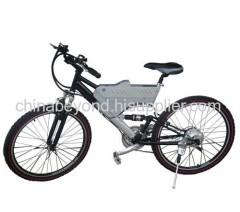 Mountain E Bicycle