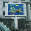 Outdoor full color display P20