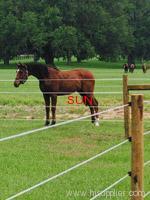 horse farm fence