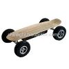 800w Wireless Remote Control Electric Skateboard