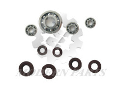 bearing and oil seal