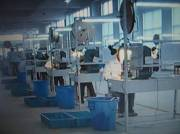 Production lines and equipments