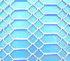 Perforated nettings