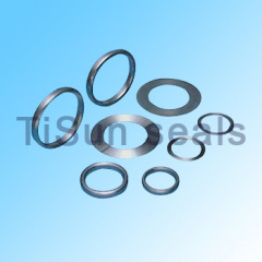 Gasket Joint Ring