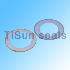 ptfe cushion gaskets