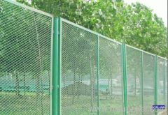 PVC Coated Expanded metal fence netting