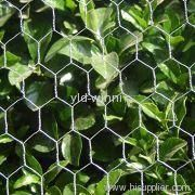Hexagonal Wire Mesh Fencings