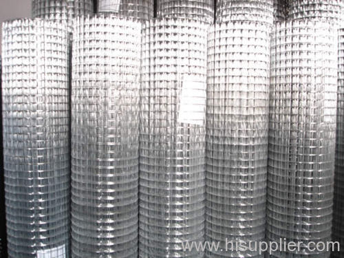 Galvanized Wire Mesh Coil
