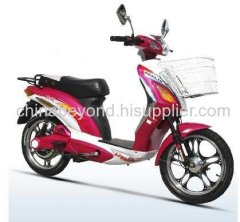 HOT Electric Bicycle