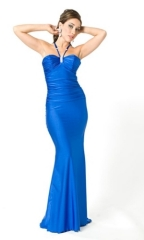 Formal Evening Dress Blue 2010 Long