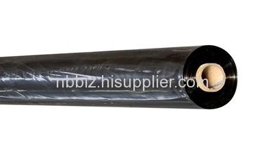 10 mil black PE sheeting