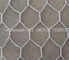 white coated hexagonal wire meshes