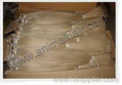 tail hair horse hair