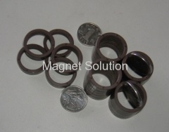 plastic injection multi pole ring magnet