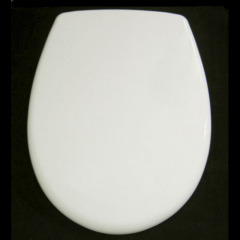 Duroplast toilet seat