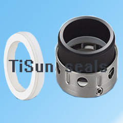 Crystallization Acid Mechanical Seal
