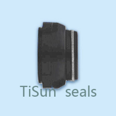 TSKH Bellow type mechanical seals
