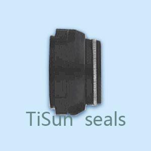 TSKH Bellow type mechanical seals
