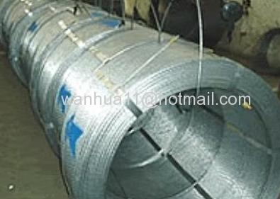 metal wire and wire mesh