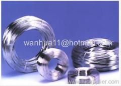 electro galvanized wires in coil