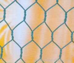 PVC Hexagonal Mesh