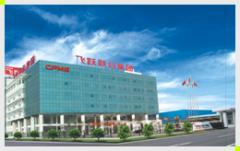 China Feiyue United Electrical Group