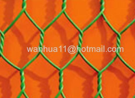 pvc Hexagonal Wires Mesh