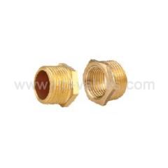 Bsp brass plug