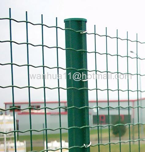 fence netting posts