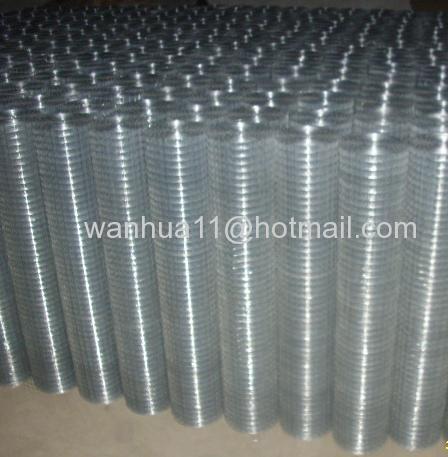 hot dip galvanized welded mesh