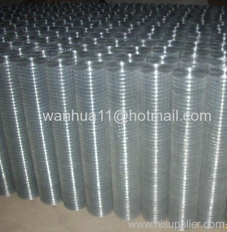 Roll galvanized Welded Wire Mesh