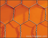 hexagonal iron wire neting