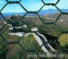 hexagoanl wire mesh