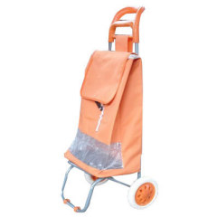 Shopping Trolley Bag and Carts