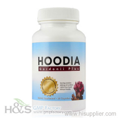 Hoodia slimming diet pills