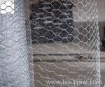 Galvanized Hexagonal mesh