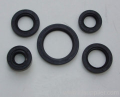 TS8 oil seals