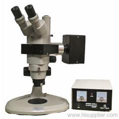 Fluorescence Stereomicroscope