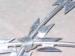Prison Fences