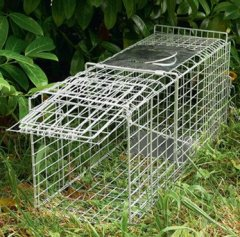 Animal Cages trap