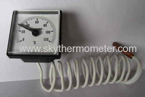 plastic case remoting thermometer