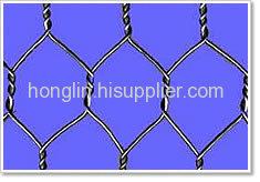 Hot dip Galvanized Hexagonal Wire Meshes