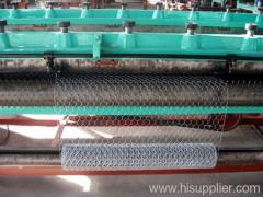 Hexagonal wire mesh for cages