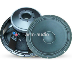 PA audio woofer