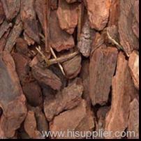 Pine bark extarct