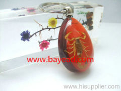 man made insect amber keychains,keyring,key ring