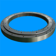 China Luoyang Bearing Inc.